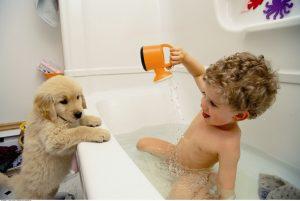 700-036683© Mark TomaltyModel ReleaseBoy in Bathtub with Dog